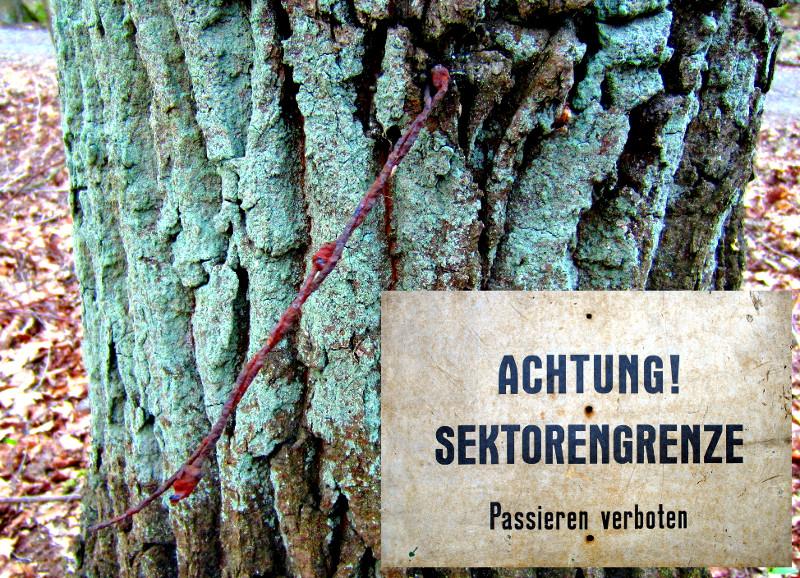 Titelbild - Stacheldraht an der Sektorengrenze Eichwalde